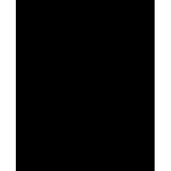TNT SUPA MASS (6.4KG)
